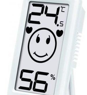 Termometru si higrometru digital de interior